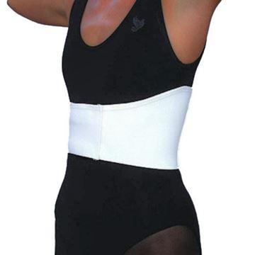 "Picture of Scott Specialties - 6"" Universal Female Rib Belt"