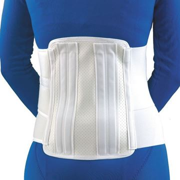 """Picture of FLA Orthopedics - 11"""" Deluxe Lumbar Sacral Back Support"""