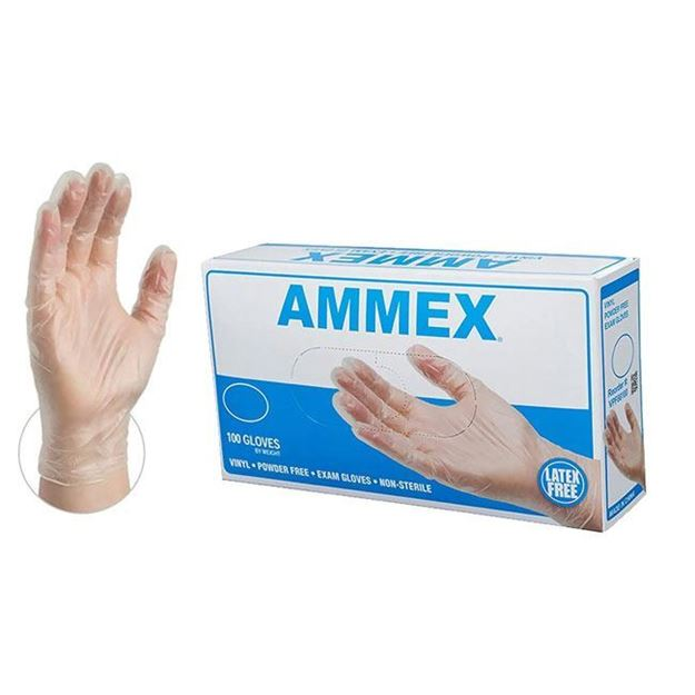 Picture of AMMEX - Clear Vinyl Disposable Exam Gloves